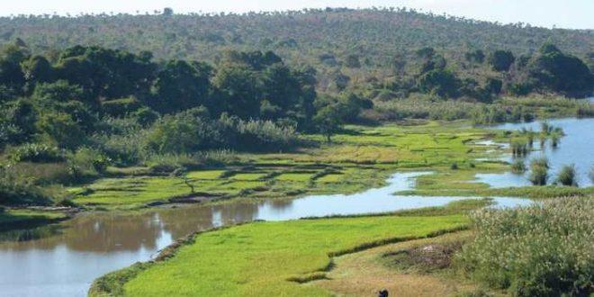 Ces rizières à Madagascar témoignent de l'origine asiatique de ses premiers habitants.